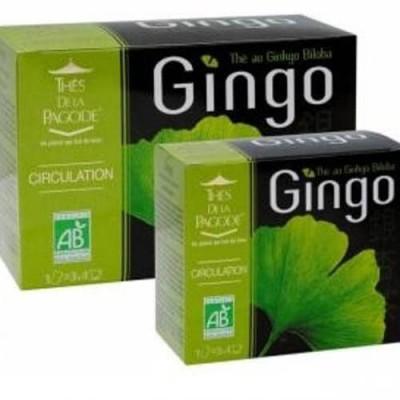 Gingo thé au Ginkgo Biloba 90 infusette