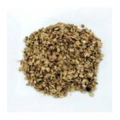 Angélique semences 100 g