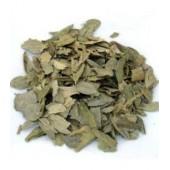 Boldo feuilles 100 g