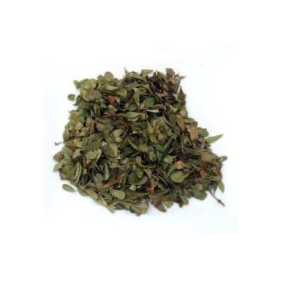 Busserole feuilles 100 g