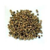 Capucine semences 100 g