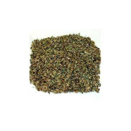 Fenouil semences 100 g
