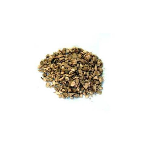 Gingembre racines 100 g