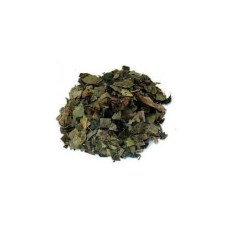 Lierre grimpant feuilles 100 g