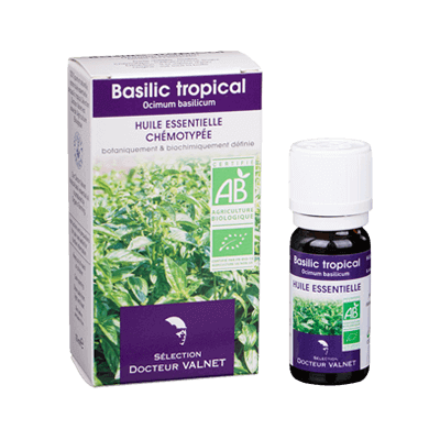 Basilic tropical 10ml