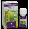 Eucalyptus citronné 10ml