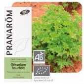 Géranium bourbon (rosat) 10ml