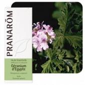 Géranium d'egypte 10ml
