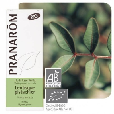 Lentisque pistachier BIO 5ml