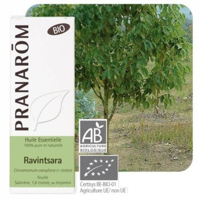 Ravintsara 10ml