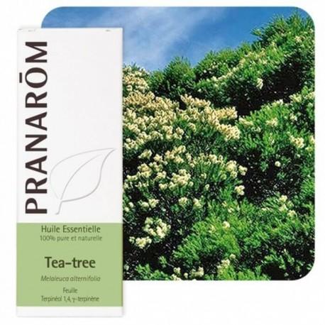 Tea tree 10ml