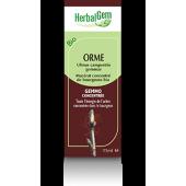 Orme - Herbalgem