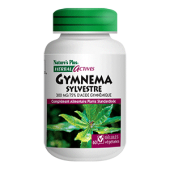 Gymnema sylvestre Nature's Plus