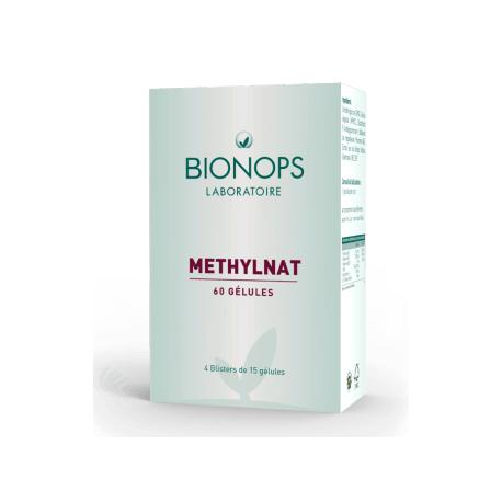 Methylnat - 60 Gélules