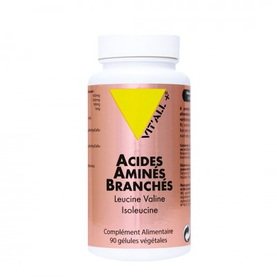 Acides Amines Branches BCAA 90 gélules