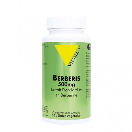 Berberis 500mg 60 gélules