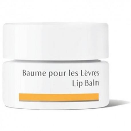 Baume pour les lèvres Bio - 4,5 ml