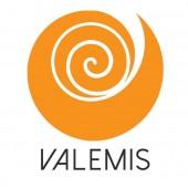 Valemis - Vedamed